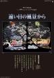 藤城清治作品集 遠い日の風景から カレンダー 2017