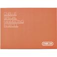 CNBLUE スペシャルファンミーティング ポストカードセット (タイプA)