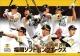 卓上 福岡ソフトバンクホークス 2019 カレンダー