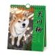 犬川柳 週めくり 2018 カレンダー
