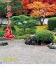 日本の庭 2019 カレンダー