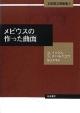 メビウスの作った曲面 本格数学練習帳2