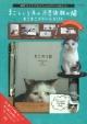 まこという名の不思議顔の猫 まこまこドリームBOX 新作フォトブック&ステーショナリー4点セット