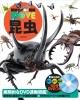 昆虫 講談社の動く図鑑MOVE DVD付