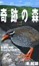 奇跡の森亜熱帯沖縄・やんばるの自然 大自然ライブラリー