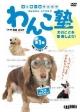 わんこ塾 犬のことを理解しよう! (1)