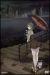 009-1 ゼロゼロナインワン vol.5[ANSB-2425][DVD] 製品画像