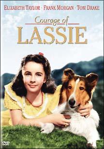 名犬ラッシー ラッシーの勇気