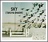 SKY(通常盤)
