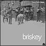 Briskey