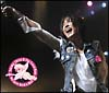 白井貴子 & THE CRAZY BOYS 25TH ANNIVERSARY~NEXT GATE LIVE 2006-2007~(DVD付)