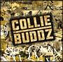 Collie Buddz(通常価格盤)