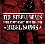 20th ANNIVERSARY BEST 1984-2004★REBEL SONGS★