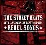 20th ANNIVERSARY BEST 1984-2004★REBEL SONGS★