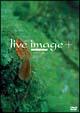 live image +-010531