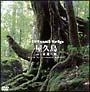 virtual trip 屋久島 2 永遠の森