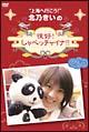 北乃きいの「很好!しゃべっチャイナ」 DVD-BOX