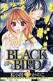 BLACK BIRD (6)