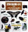 虫の飼いかた・観察のしかた 近所の虫の飼いかた(3)