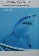 サメのおちんちんはふたつ