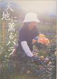 大地に薫るバラ
