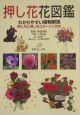 押し花花図鑑 わかりやすい植物解説