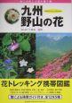 九州・野山の花 雨と大地と太陽の贈り物
