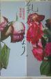 乳房、花なり。