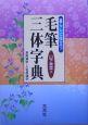 暮らしに役立つ毛筆三体字典 常用漢字・人名用漢字