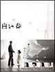 白い春 DVD-BOX