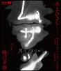 ムサシ特別版Blu-ray Disc