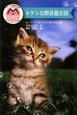 キケンな野良猫王国 マック動物病院ボランティア日誌