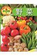 野菜 食育にやくだつ食材図鑑1