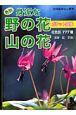 身近な野の花山の花ポケット図鑑 花色別777種