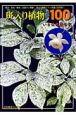 斑入り植物ベスト100 いさは礼讃の記