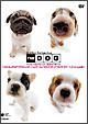 THE DOG ベスト・セレクション まるっこチーム ~パグ、ミニチュア・ダックスフンド、フレンチ・ブルドッグ、キャバリア・キング・スパニエル~