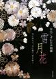 雪月花 草乃しずか日本刺繍 雪に待ちて、月に想い、花を唄う