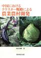 中国におけるクラスター戦略による農業農村開発