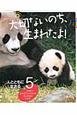 大切ないのち、生まれたよ! 人とともに生きる ワラビー ジャイアントパンダ タンチョウ シャチ どうぶつの赤ちゃんフォトストーリー(5)