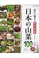 日本の山菜100超! 山から海まで完全実食