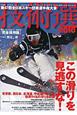 技術選 2010 第47回全日本スキー技術選手権大会