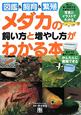 メダカの 飼い方と増やし方が わかる本 図鑑&飼育&繁殖 楽しく長く飼育するためのコツが写真とイラストでわか