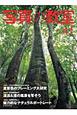 写真の教室 特集:すごい!素晴らしい!といわれる夏景色のフレーミング大研究 (41)