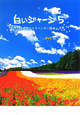 白いジャージ 先生とラベンダー畑 (5)