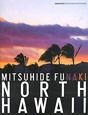 NORTH HAWAII