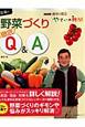 趣味の園芸 藤田智の野菜づくり 徹底Q&A やさいの時間