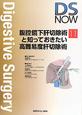 腹腔鏡下肝切除術と知っておきたい高難易度肝切除術 DS NOW11