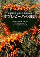 オブレピーハの栽培 宇宙飛行士も食した機能性果樹