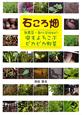 石ころ畑 無農薬・無化学肥料の虫もよろこぶピカピカ野菜