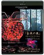 virtual trip presents 「金魚の美」アートアクアリウム(DVD同梱版)